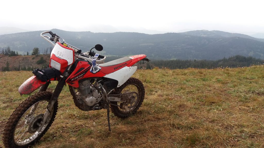 CRF230 Trial bike, which is the most common type of dirt bike for beginners.