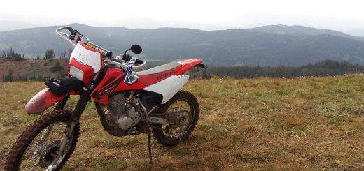 Honda CRF230F Trail Bike What Are All The Types of Dirt Bikes & Names?