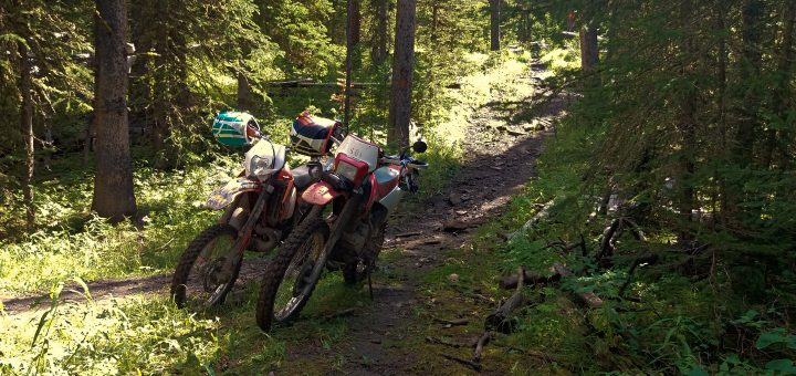 Montana 2017 5 How To Properly Ride A 2 Stroke In The Woods