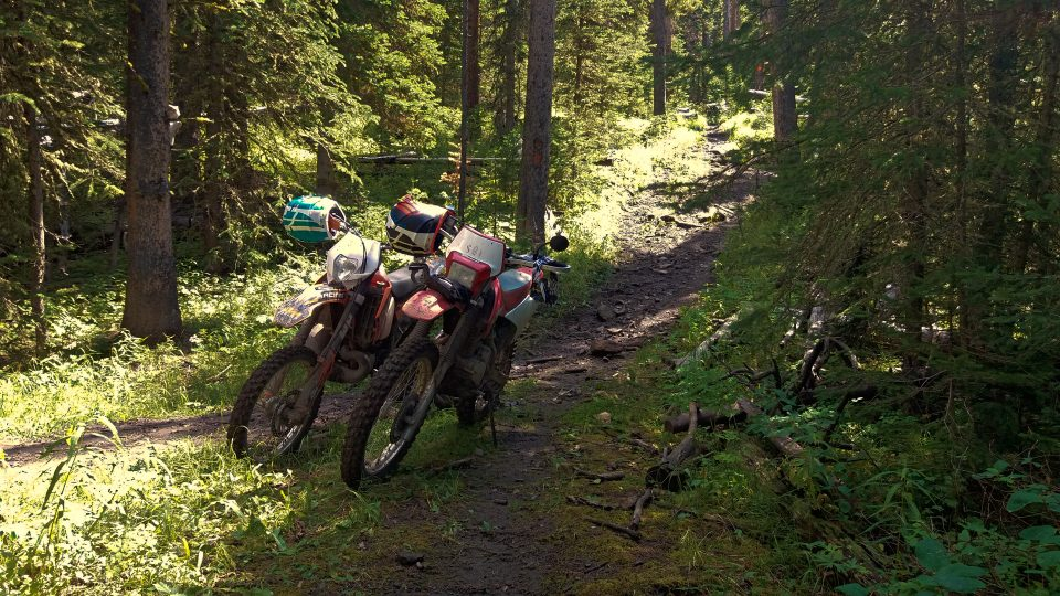 Riding in the woods on a 2 stroke or 4 stroke is a blast